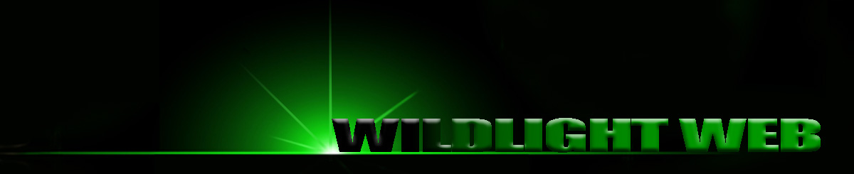 Wildlight Web